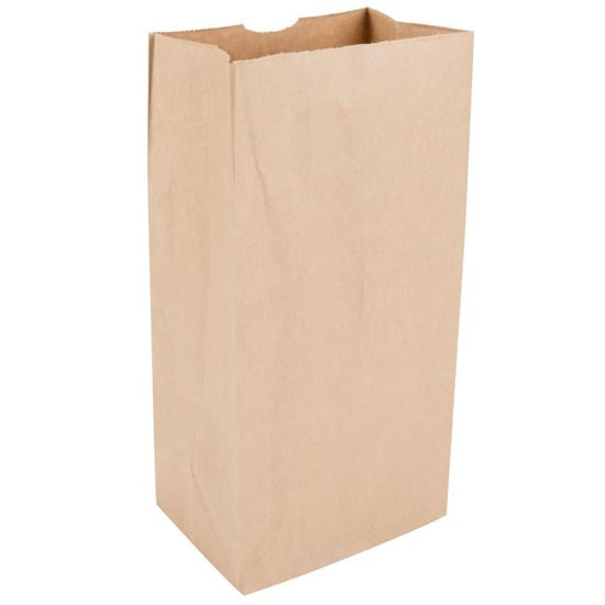 10 HD Brown Paper Bag 250pcs