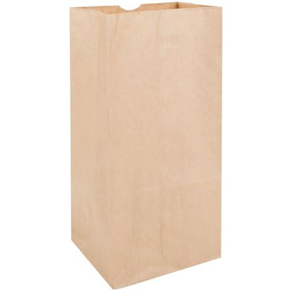 Picture of #25 HD Brown Paper Bag (500pc)